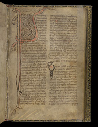 Zoomorphic Interlace Initials, In A Volume Of Miscellaneous Prose And Verse Theological Texts